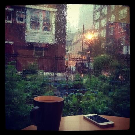 Rain in Summer. In Philly.