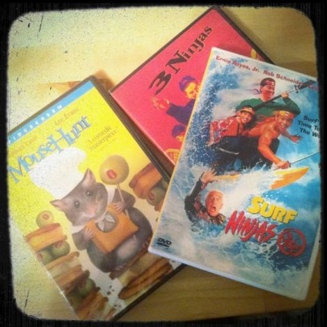 Last year my brother surprised me with a few DVDs of our 90s childhood favorites: Mouse Hunt, Honey I Shrunk the Kids, and Three Ninjas.