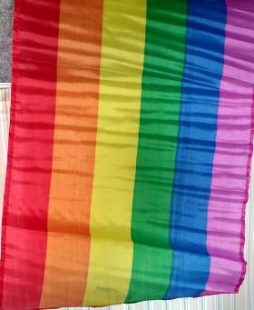 fv-pride-flag